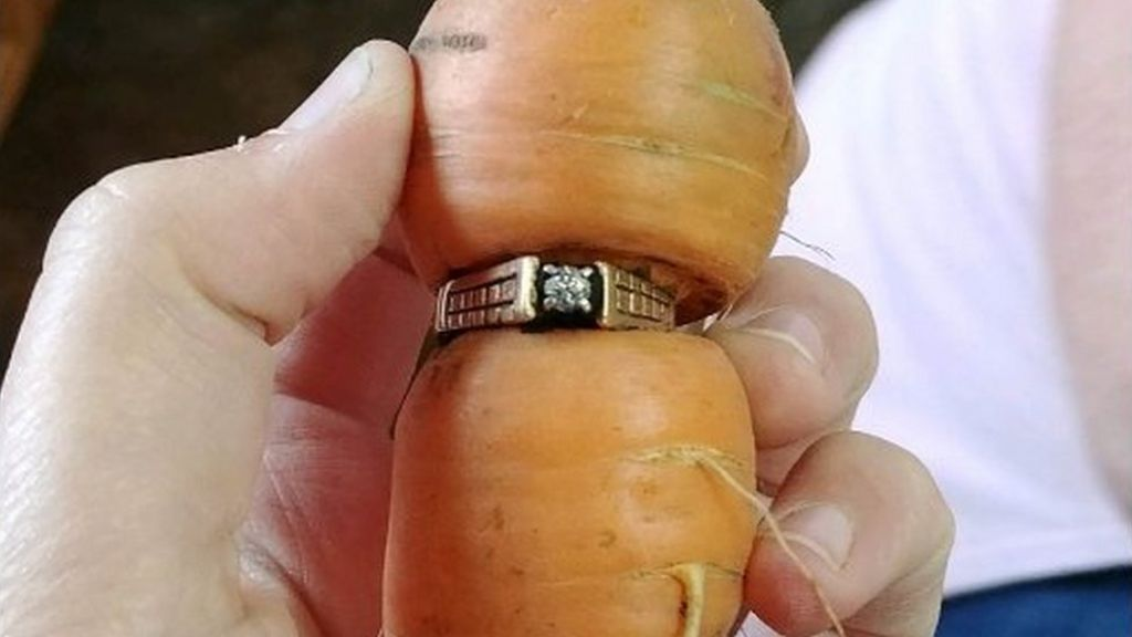 Woman Finds Long Lost Diamond Ring On Carrot In Garden