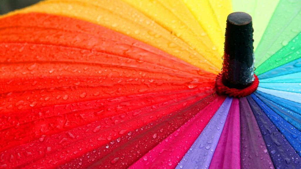 Sharing firm loses most of its 300,000 umbrellas