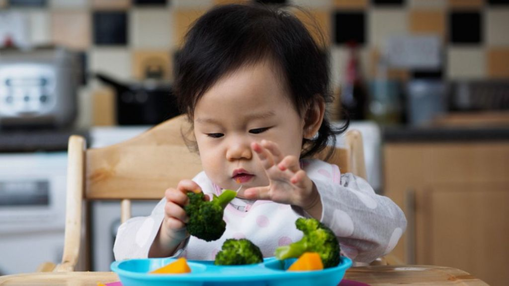 Baby Led Weaning - The Mush Stops Here!