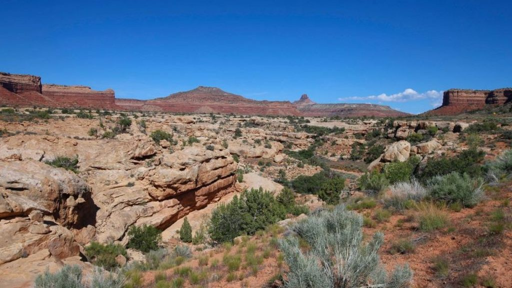 Trump shrinks Utah monuments angering environmentalists