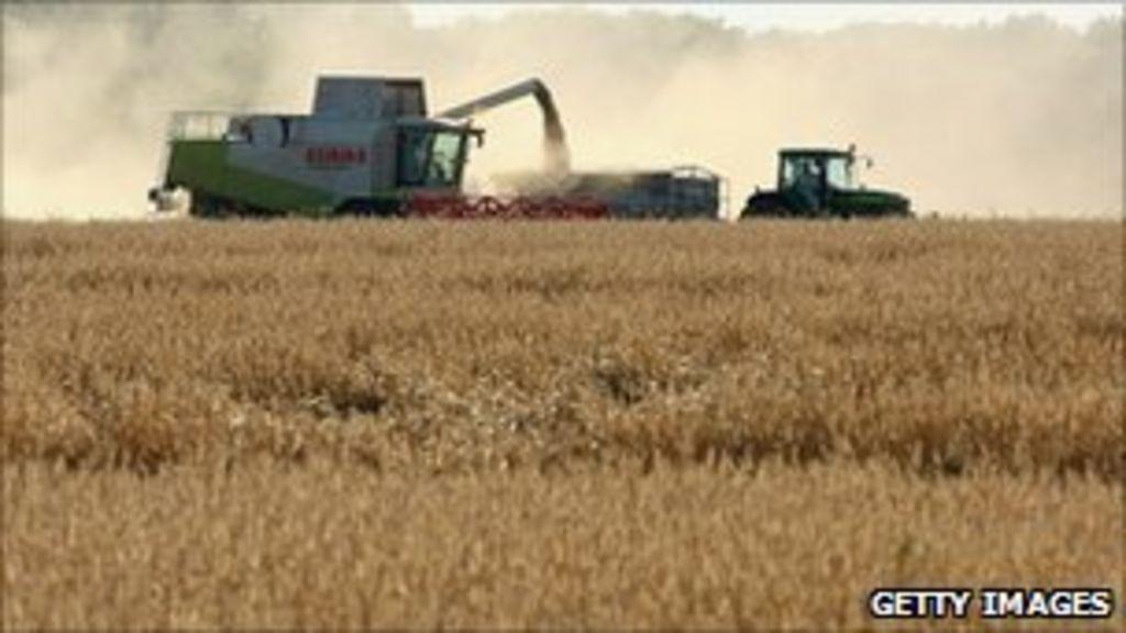 Q&A: Reform of EU farm policy - BBC News