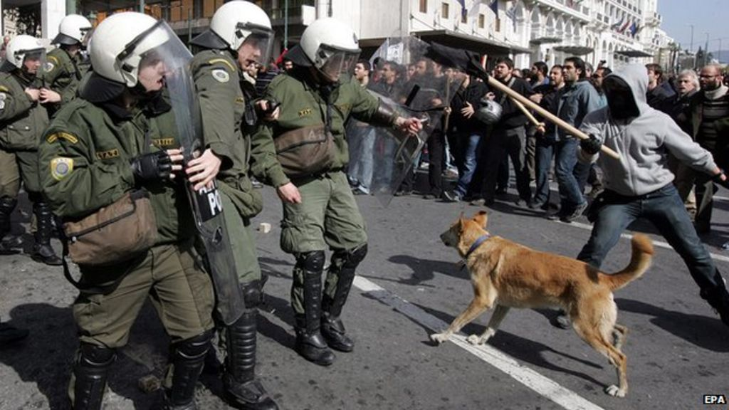 Greek Riot Dog Video