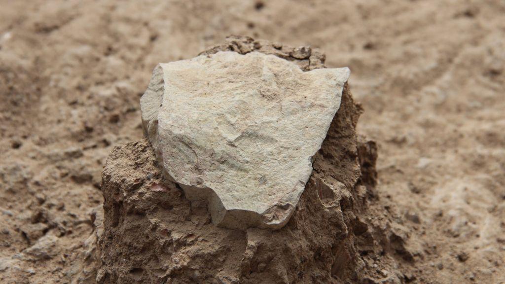 Oldest Stone Tools Nature