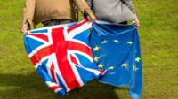 People holding GB and EU flags