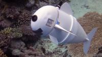 SoFi - the soft robot fish