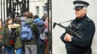 A Met Police firearms officer in Westminster
