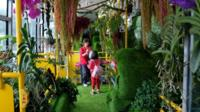 "A passenger takes photos among live vegetation inside the ""forest bus"" in Taipei on May 26, 2017."