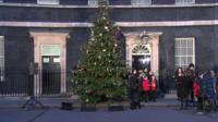 Tree outside Number 10