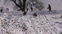 Children sledging in the snow