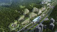 China's plans for a forest city
