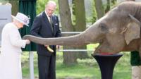 Queen Elizabeth and Donna the elephant