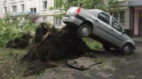A car on top of the roots of a tree in Moscow.