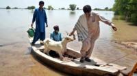 Pakistanis flee floods in the Dadu area of Sindh province