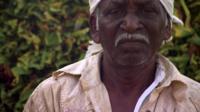 Tobacco farmer