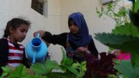 A charity is helping refugees living in Lebanon to build their own micro gardens.
