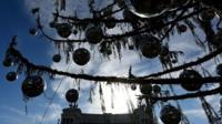 Rome's Christmas tree