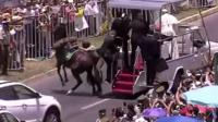 Horse and Popemobile