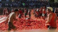 Tomato War in Chile