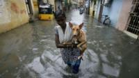A woman holding a dog wades through a flooded street in Chennai.