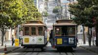 Two trams under trees