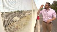 BBC reporter Tomos Morgan at a fence in Calais