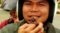 Man eating tarantula
