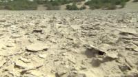 Crumbling dust in what used to be Lake Chad