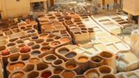 Moroccan tannery