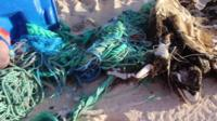 Rubbish on Henderson Island