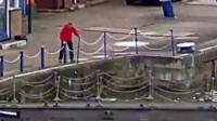Man rescues cat