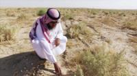 Ali al-Dousari with desert plants