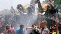 Elephants spraying water