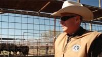 A Texas ranger checking cattle