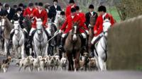 Fox hunt in progress