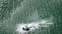 The helicopter ditches in the Auckland harbour