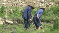 Farmers in China