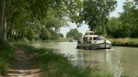42,000 trees around Canal du Midi will be chopped down as the deadly fungus continues to spread