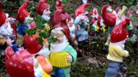Gnomes in a reserve