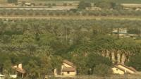 Date palm plantations in the Jordan Valley