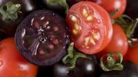 Purple tomato, red tomato