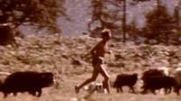Former record-holder Joss Naylor running in 1986