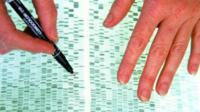 Examining a DNA profile