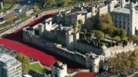 The installation has drawn huge crowds to the Tower of London
