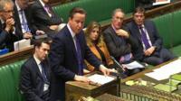 David Cameron talks to MPs