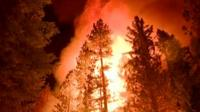 California forest fires