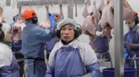 A worker in a turkey factory