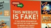 Screen grab of fake website warning