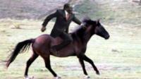 mugabe horse