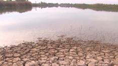 يواجه العراق شحا في المياه بسبب انخفاض نسبة الأمطار خلال العام الماضي في البلاد، إضافة إلى عدة عوامل أخرى من بينها أساليب الري التي تؤدي إلى هدر المياه.