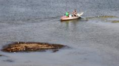 تدنى مستوى مياه النيل في القاهرة مؤخرا وظهرت يعض الجزر التي لم تكن موجودة سابقا
